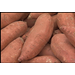 Sweet potato acreage, demand up