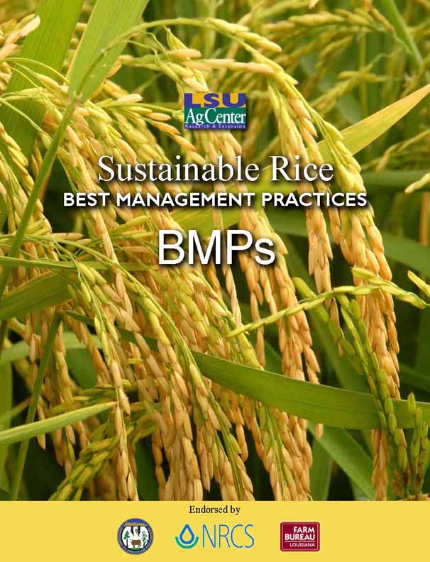 Rice Production Best Management Practices