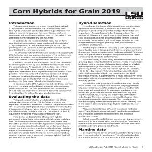 Corn Hybrids for Grain 2019