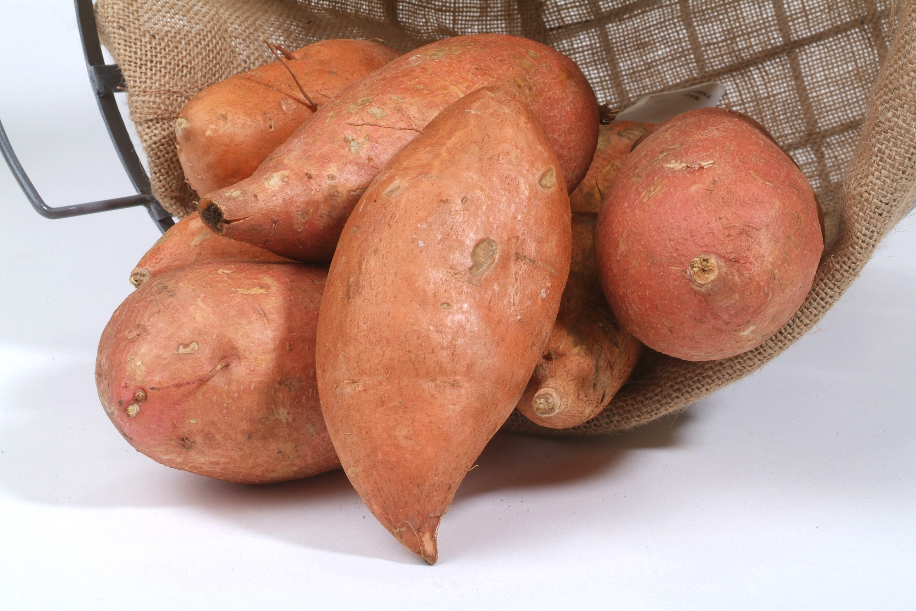 Sweet potato field day set for Aug. 31 at Chase