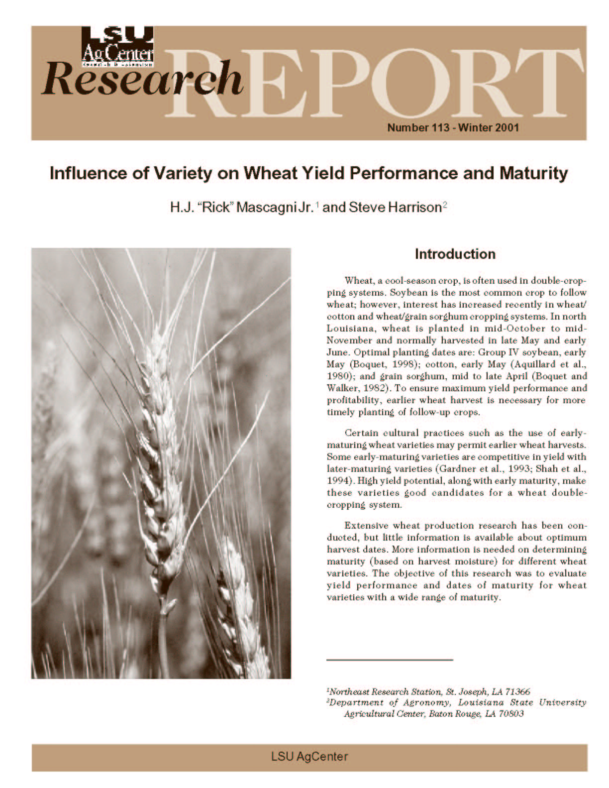 Influence of Variety on Wheat Yield Performance and Maturity (Winter 2001)