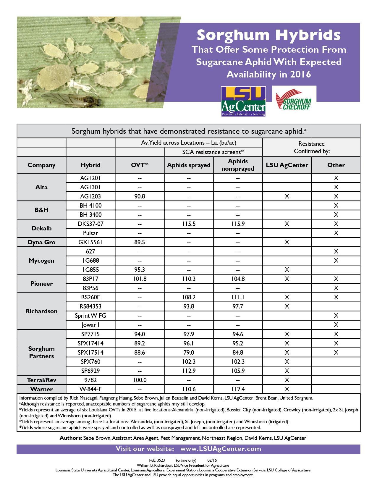 2016 Sorghum Hybrids that Offer Some Protection from Sugarcane Aphid