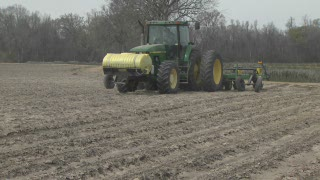 Cold wet weather delays corn planting