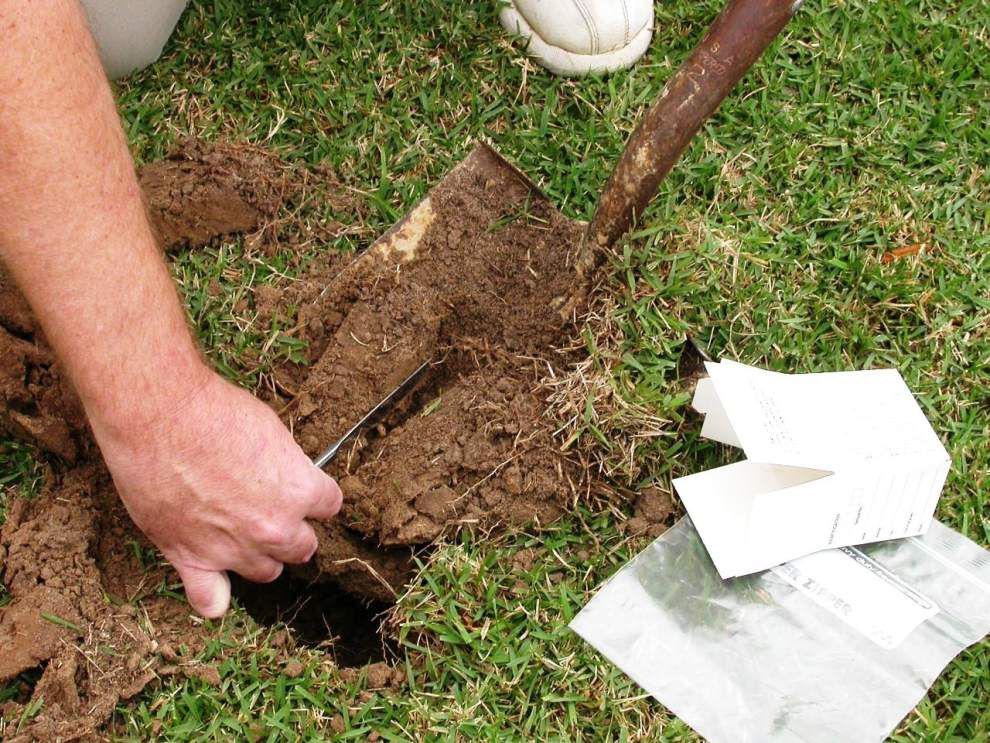 Soil testing can help determine what nutrients your soil needs