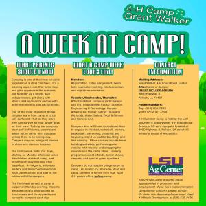 It's Time for 4-H Summer Camp!