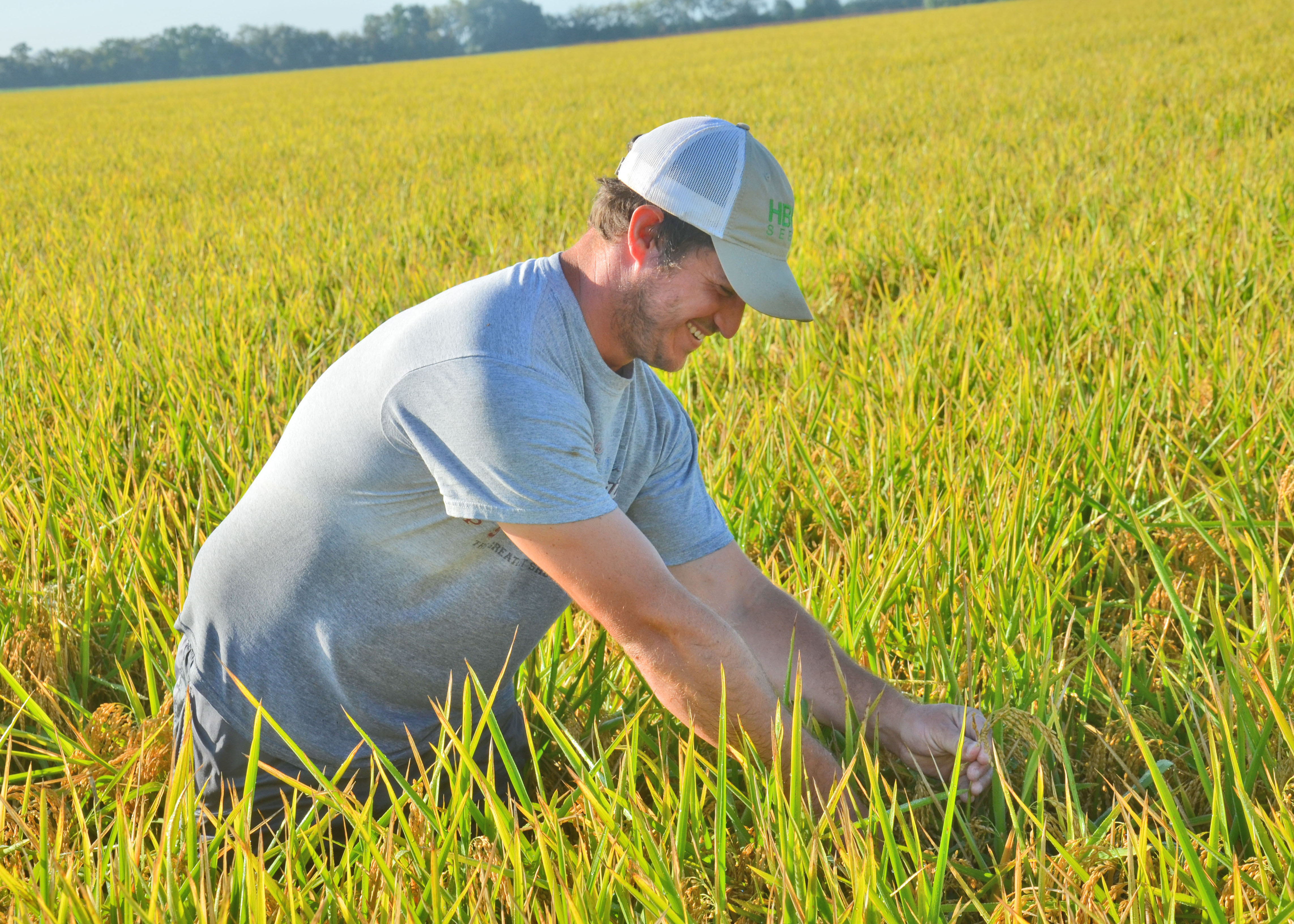 Rick Zaunbrecher in rice field1.jpg thumbnail