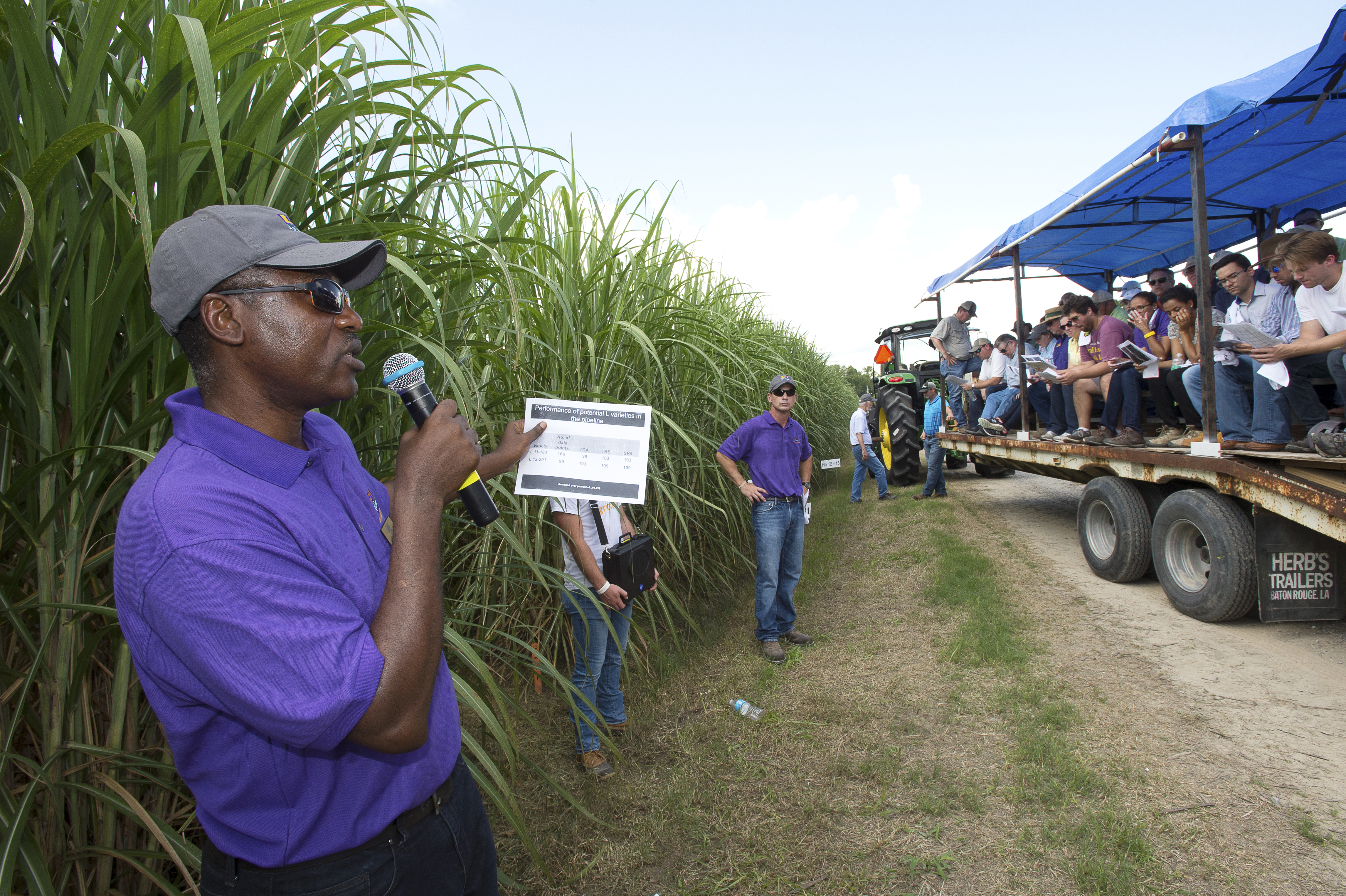 Kimbent at sugar field day.jpg thumbnail