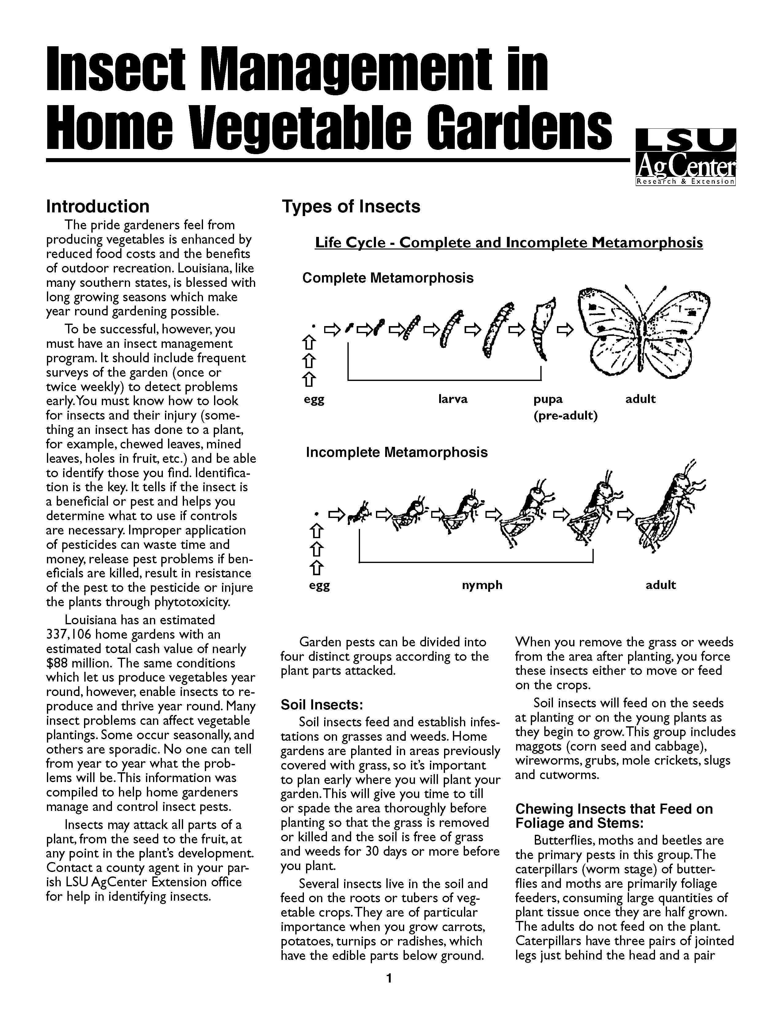 Insect Management in Home Vegetable Gardens