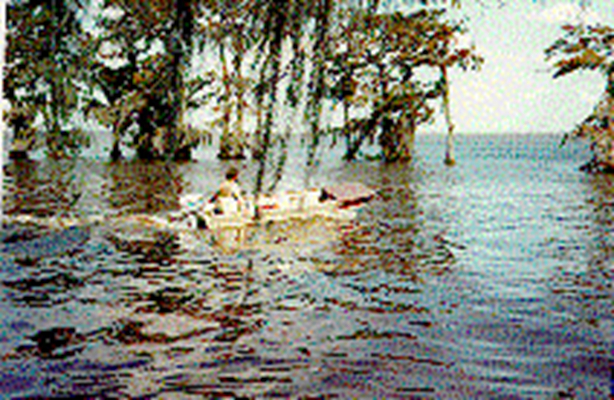 Image of fishing in St. Mary Parish