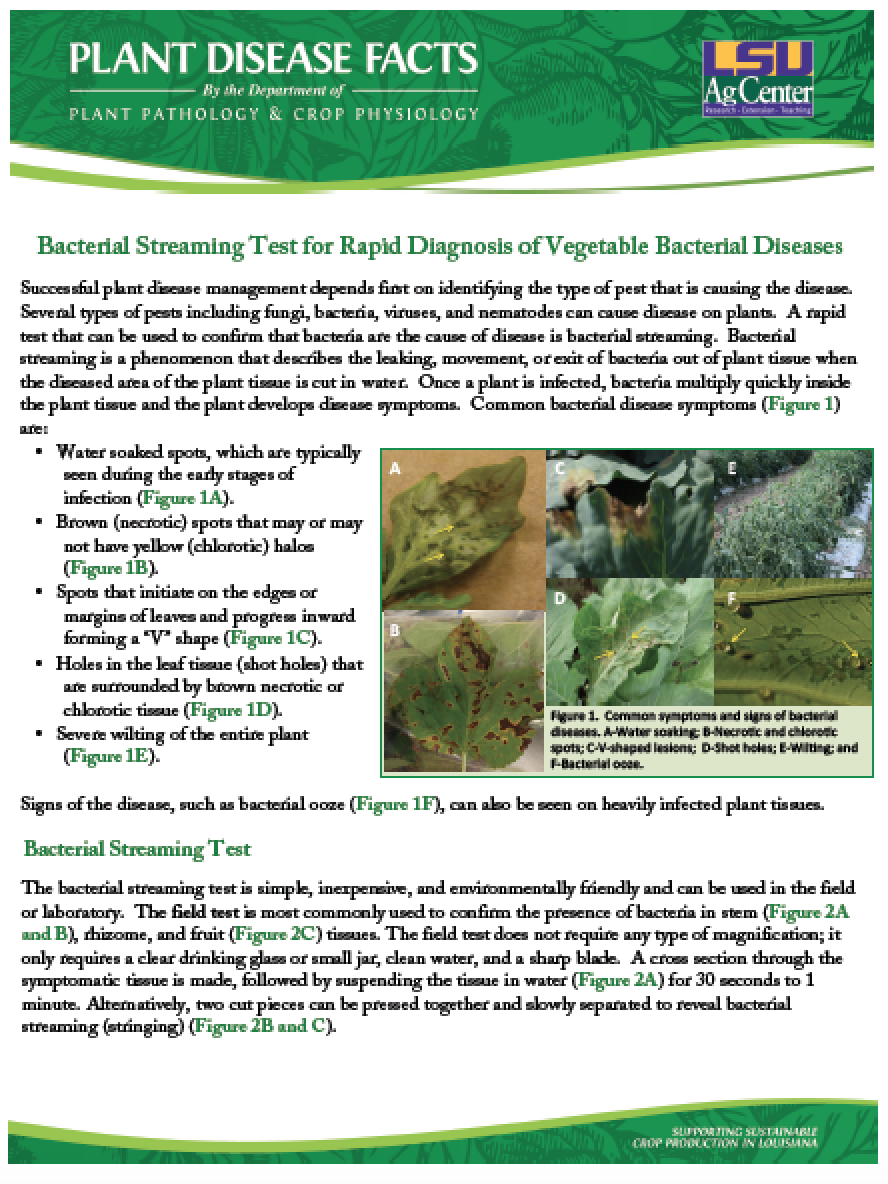 Plant Disease Facts-On-Line Series