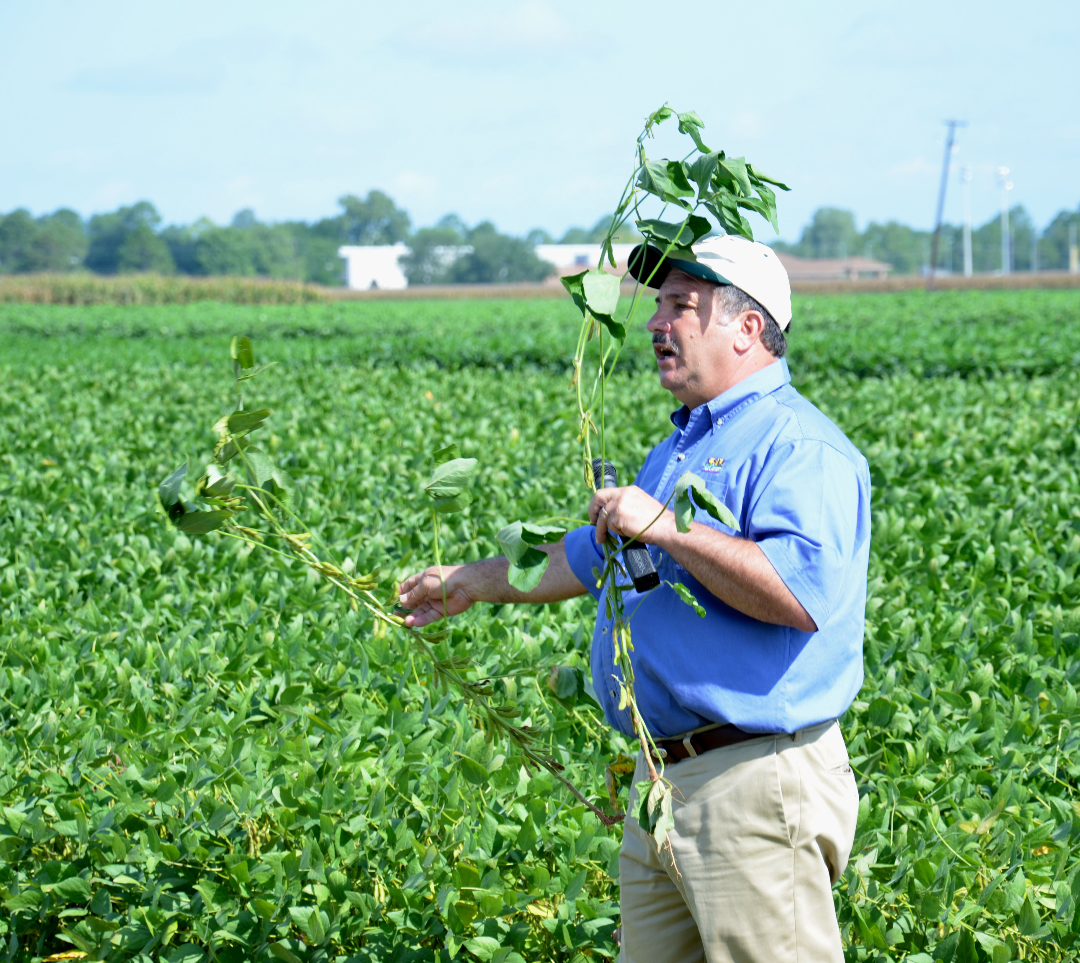 Demonstration fields teach farmers how to improve yields