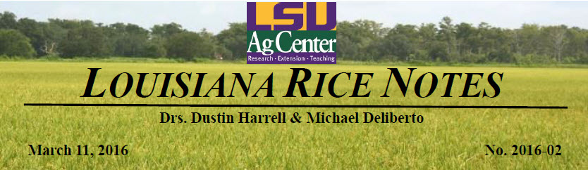 2016 Rice Field Notes #2