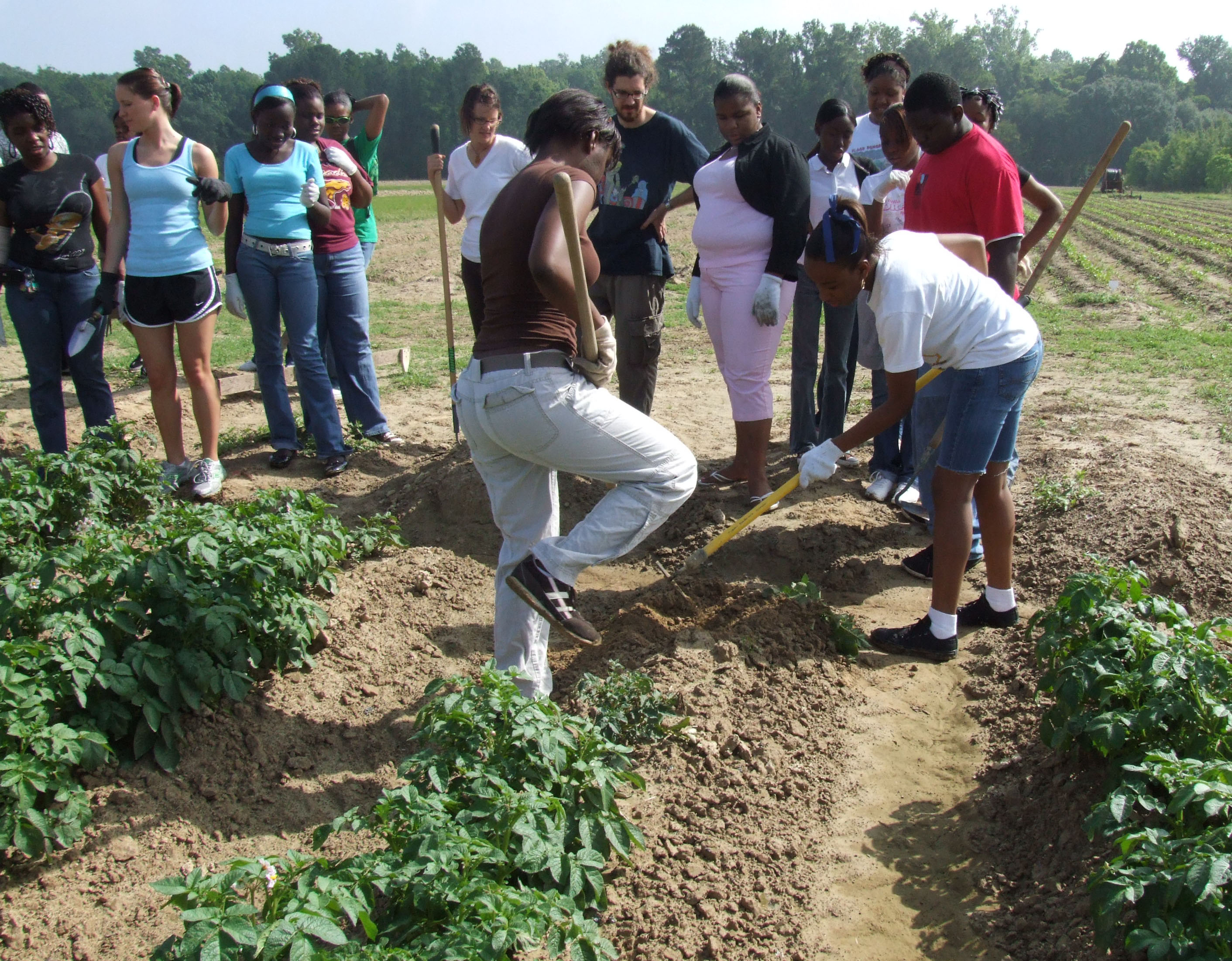 Planting kicks off Baton Rouge high school students' summer farming experience