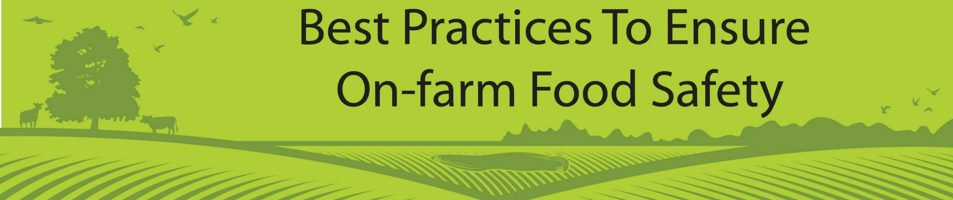 Onfarm food safety banner.jpg thumbnail