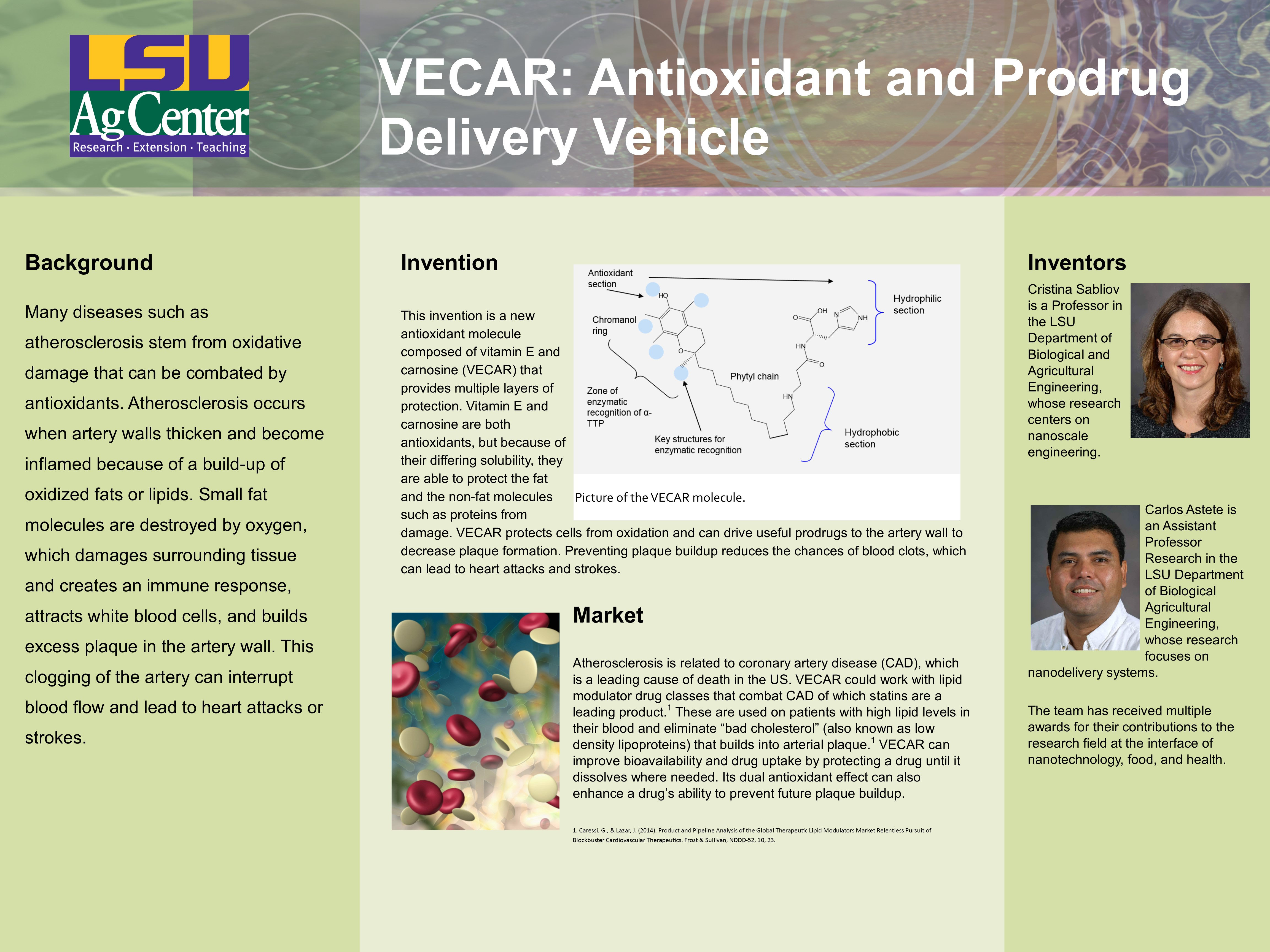 IP-PosterSessionTemplate VECAR Final 96jjpg