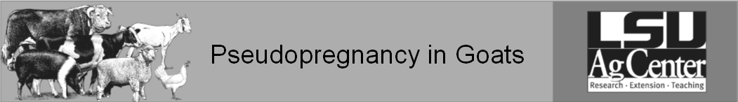 Pseudopregnancy in Goats.png thumbnail