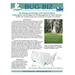Bug Biz: The Biology and Ecology of the Salvinia Weevil