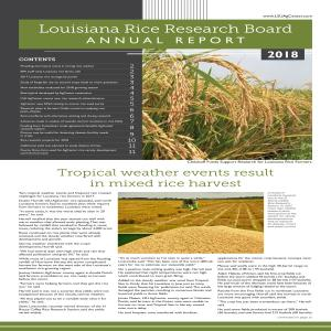 Louisiana Rice Research Board Annual Report 2018