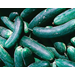 Improving Cucumber Yields Following Nematode-resistant Tomatoes