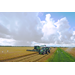 Rice harvest a mixed bag for Louisiana farmers
