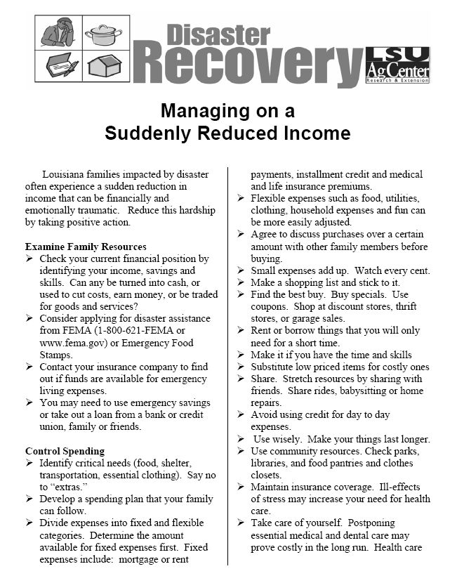 Disaster Recovery: Managing on a Suddenly Reduced Income