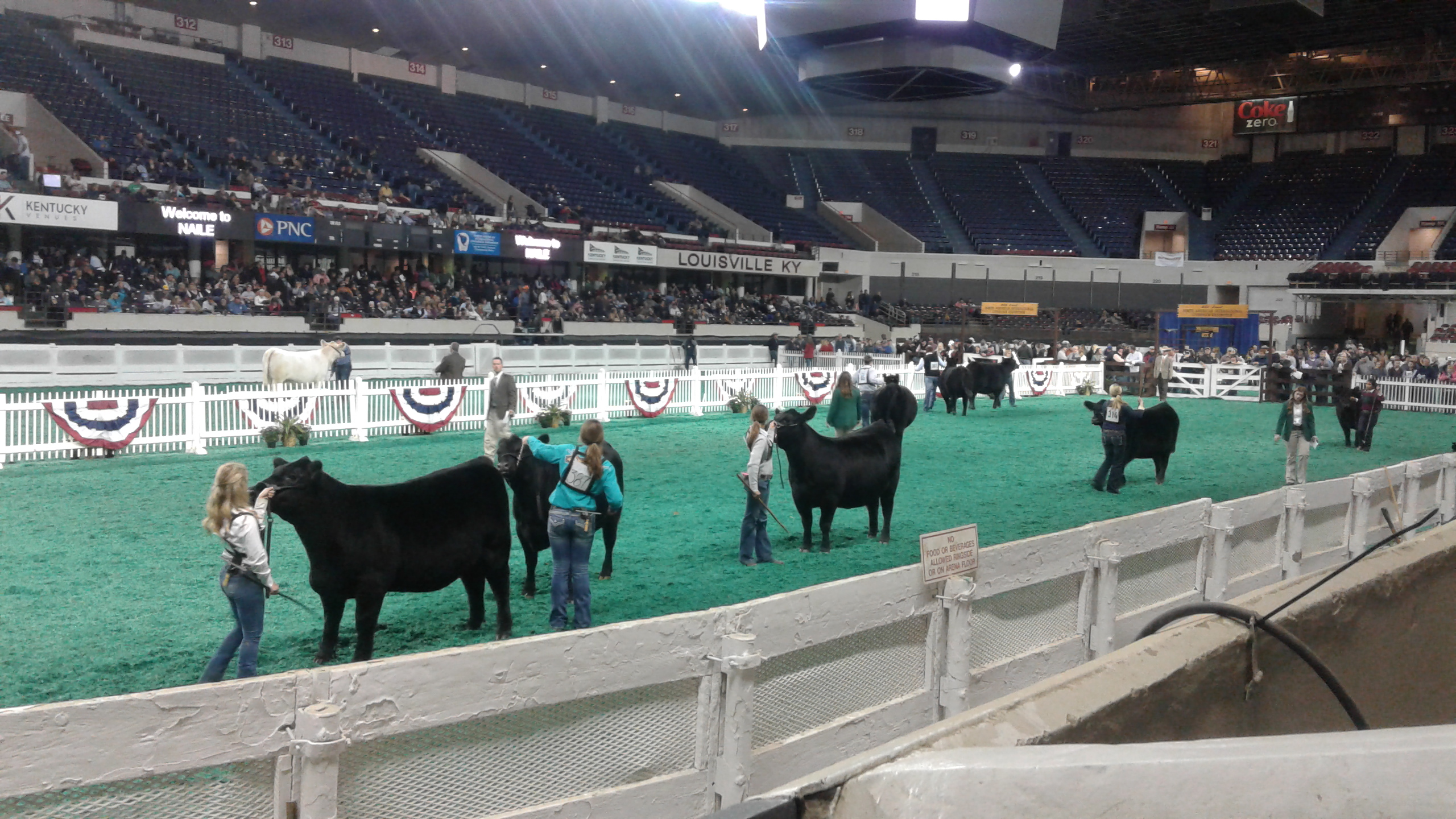 Louisiana youth attend livestock, poultry judging trip to Kentucky