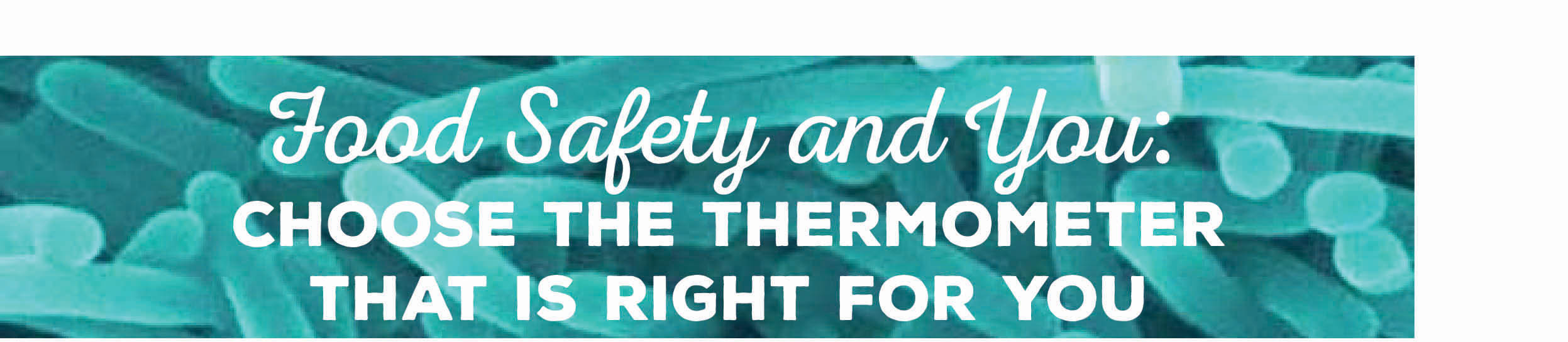 Food Safety and You: Choose the Thermometer That is Right For You