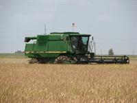 Estimating Rice Combine Harvest Cost:  Performance Rate Capital Cost Operating Cost