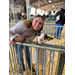 State livestock show award winners announced