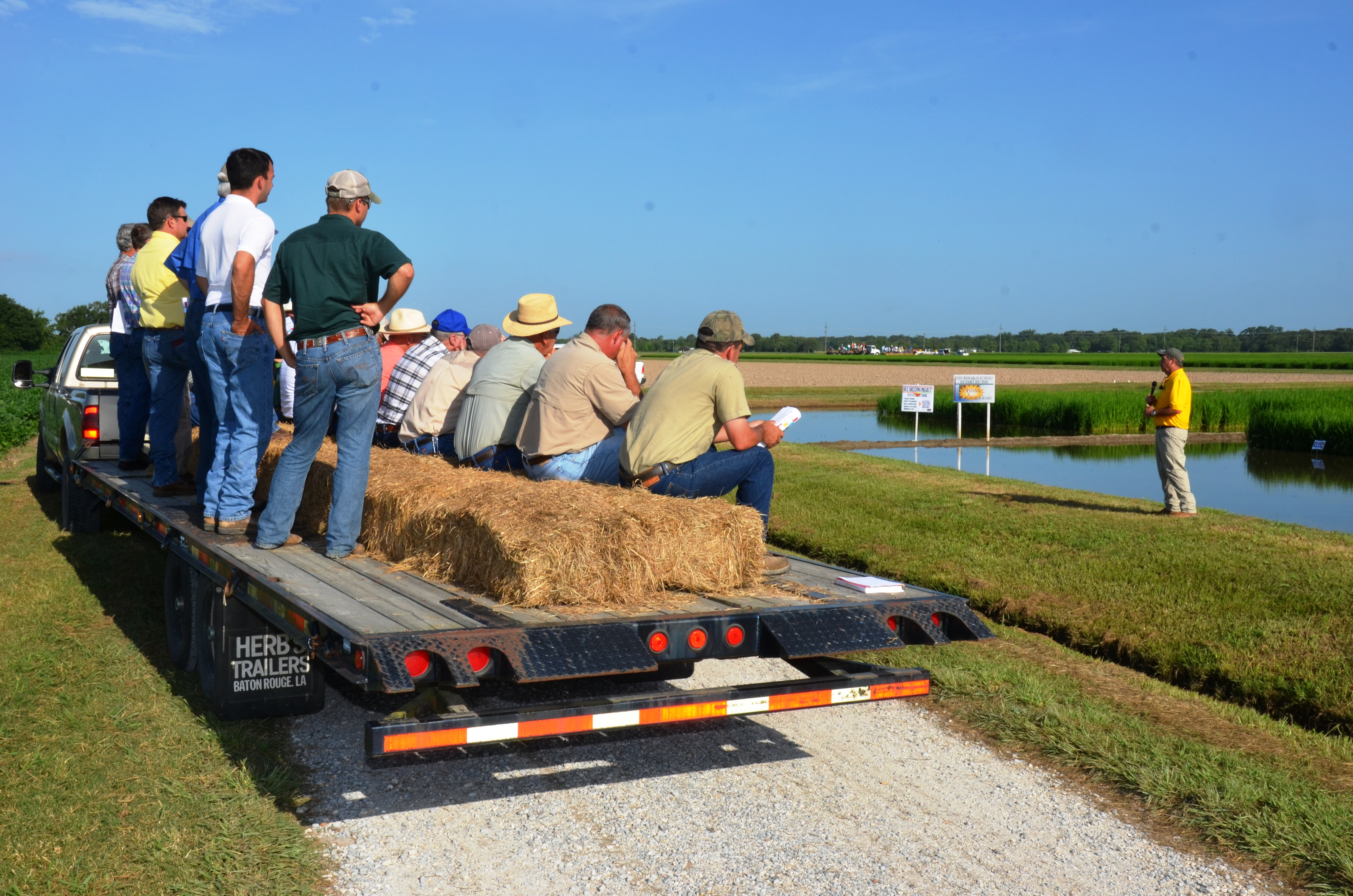 Dr. Eric Webster discussing rice weed control during the Rice Research Station Field Day