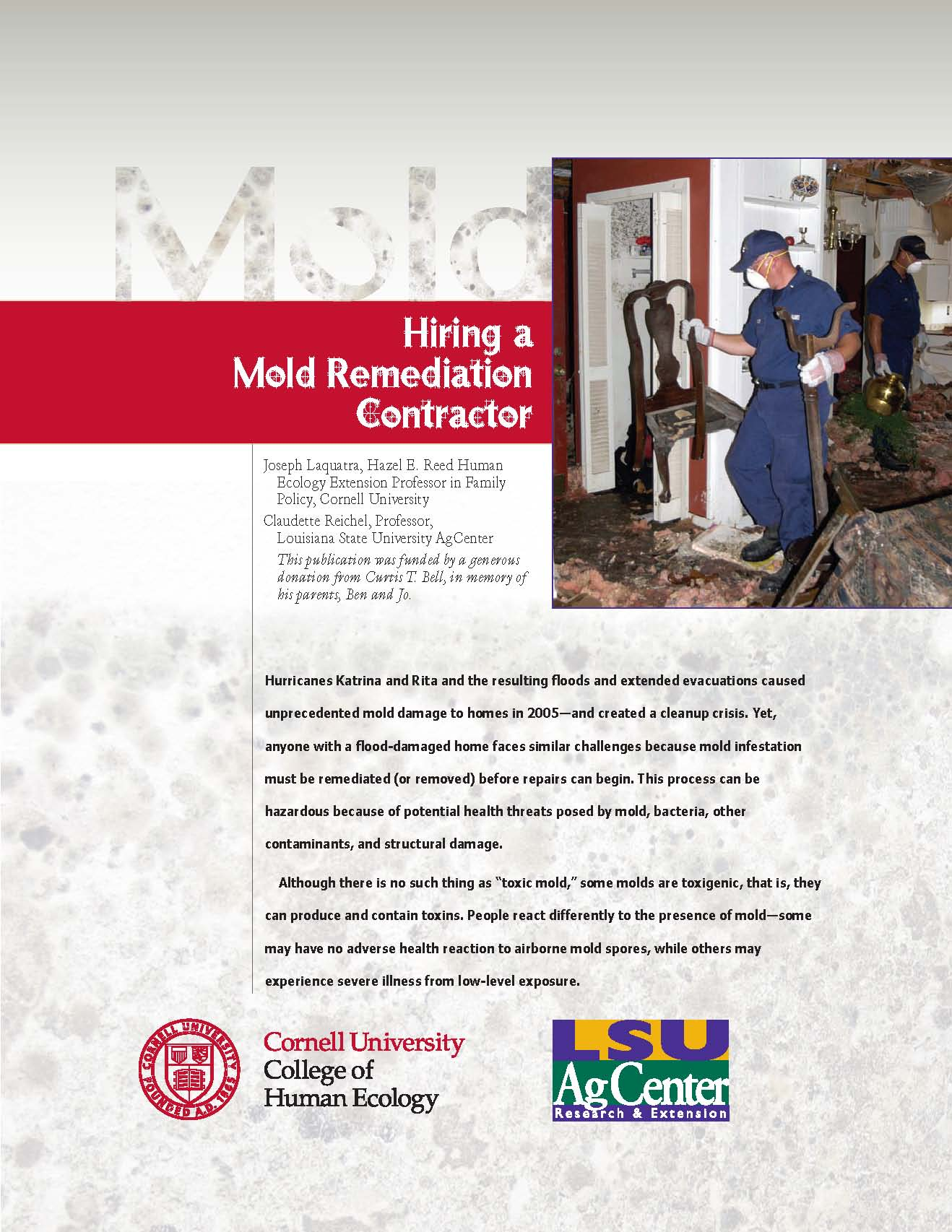Hiring a Mold Remediation Contractor