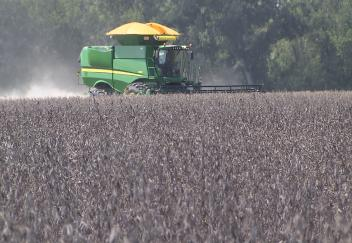 La. soybean harvest starts strong