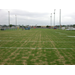 Considerations for Sand-based Turfgrass