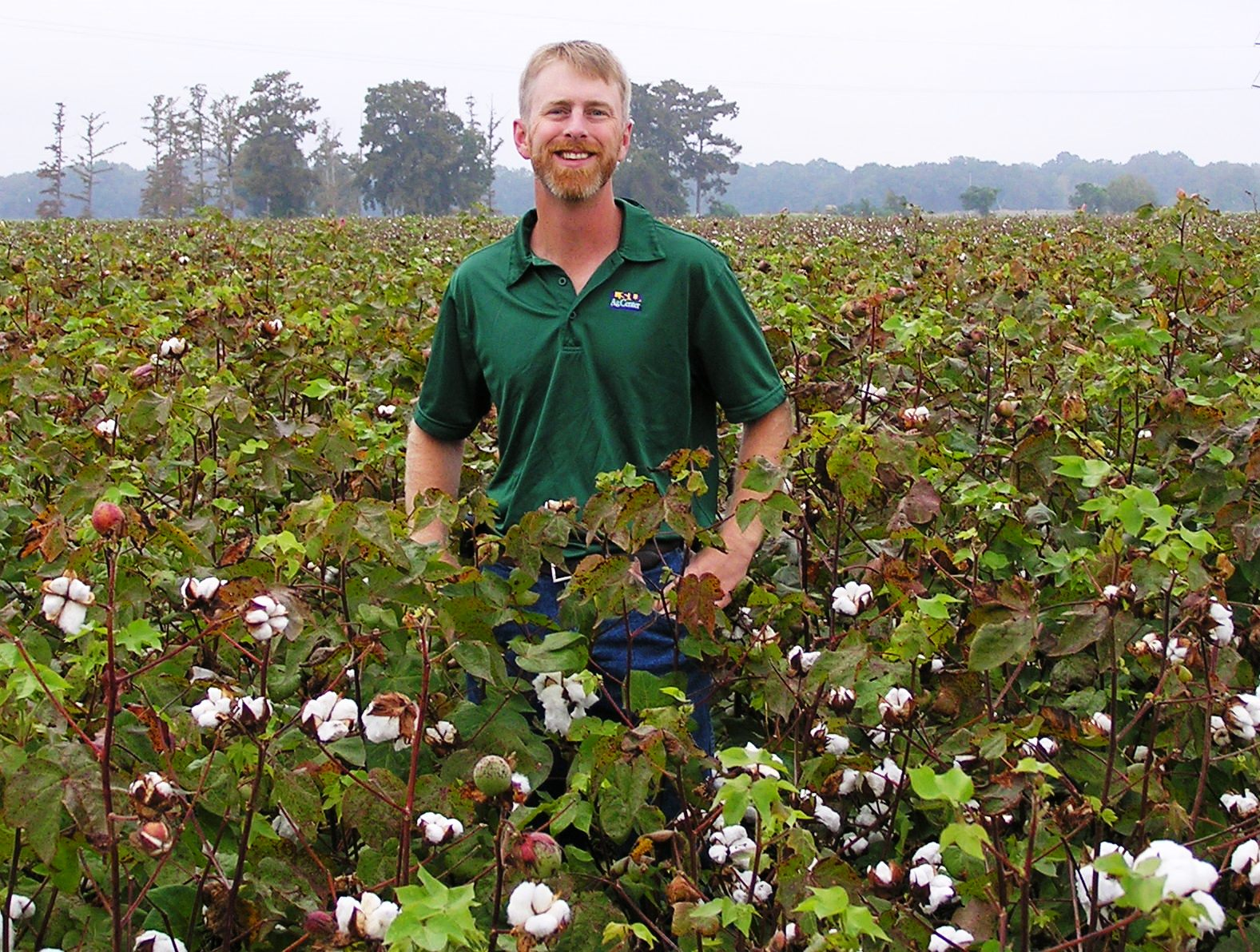 Price named LSU AgCenter field crops plant pathologist