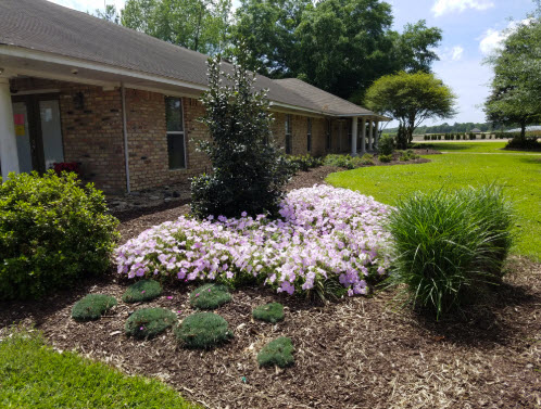 Get Outside And Redesign That Flower Bed