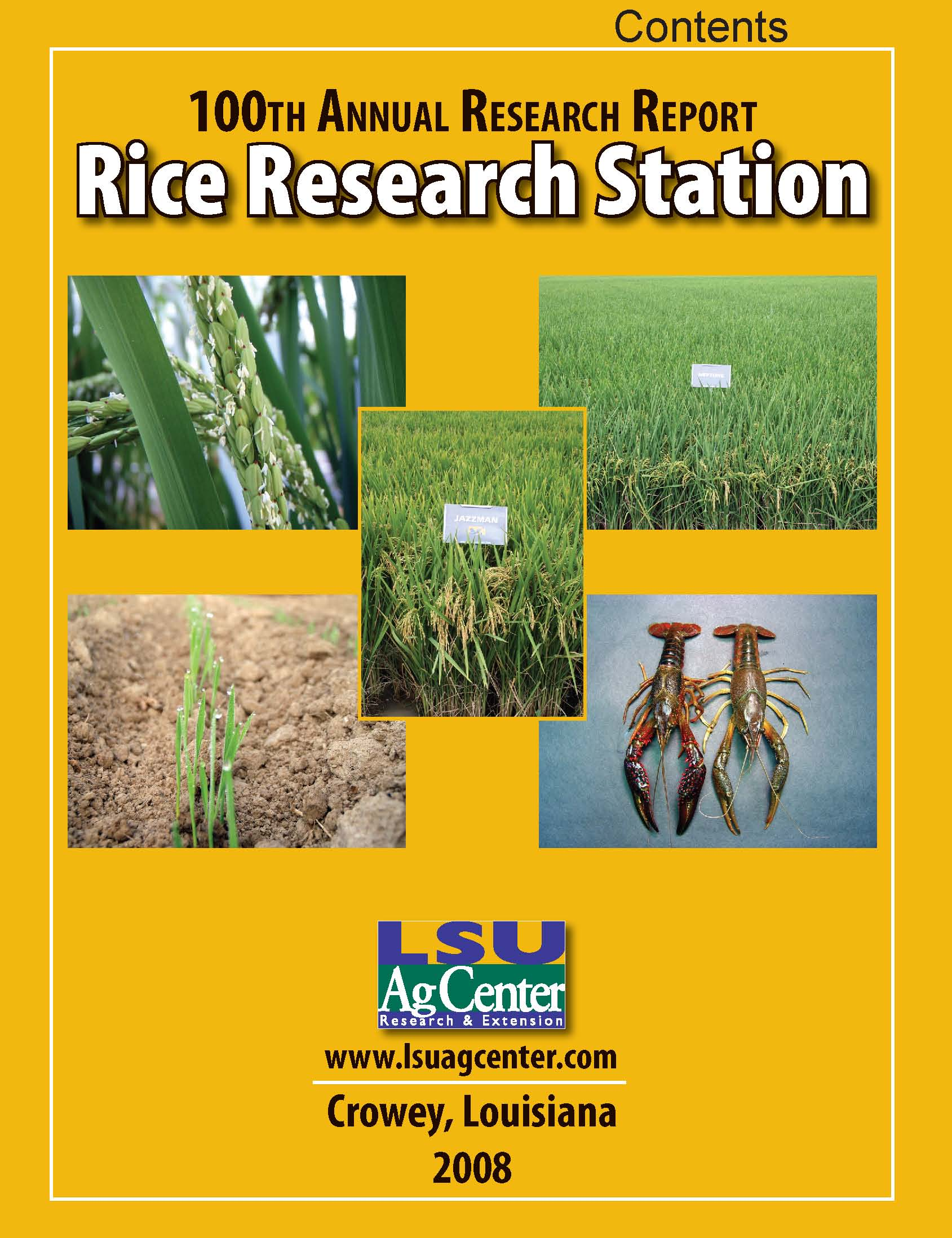2008 Rice Research Annual Report