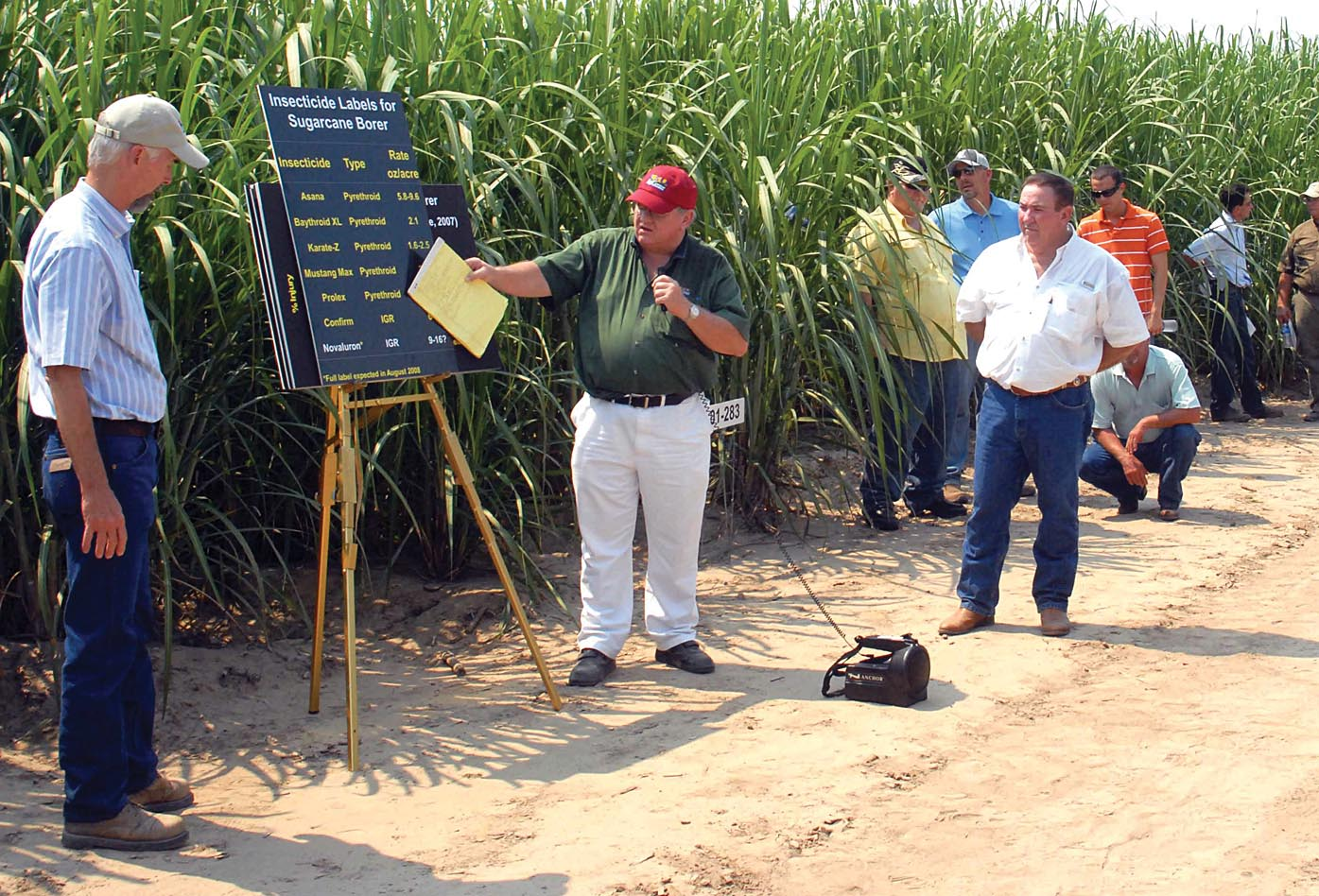 Rust keeps threatening Louisiana sugarcane