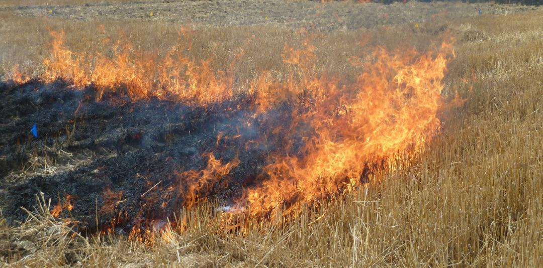 Agricultural Prescribed Burning Certification Class