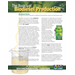 The Basics of Biodiesel Production