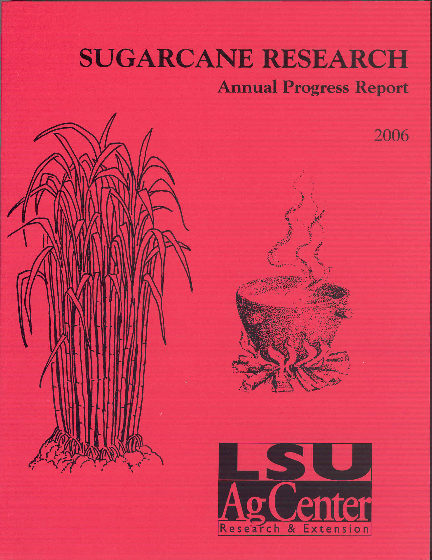 2006 Sugarcane Annual Report