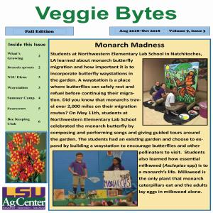 Veggie Bytes Newsletter Series 9