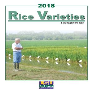 2018 Rice Varieties and Management Tips