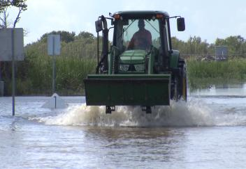 Hurricane Harvey causes minimal agricultural damage in southwest Louisiana