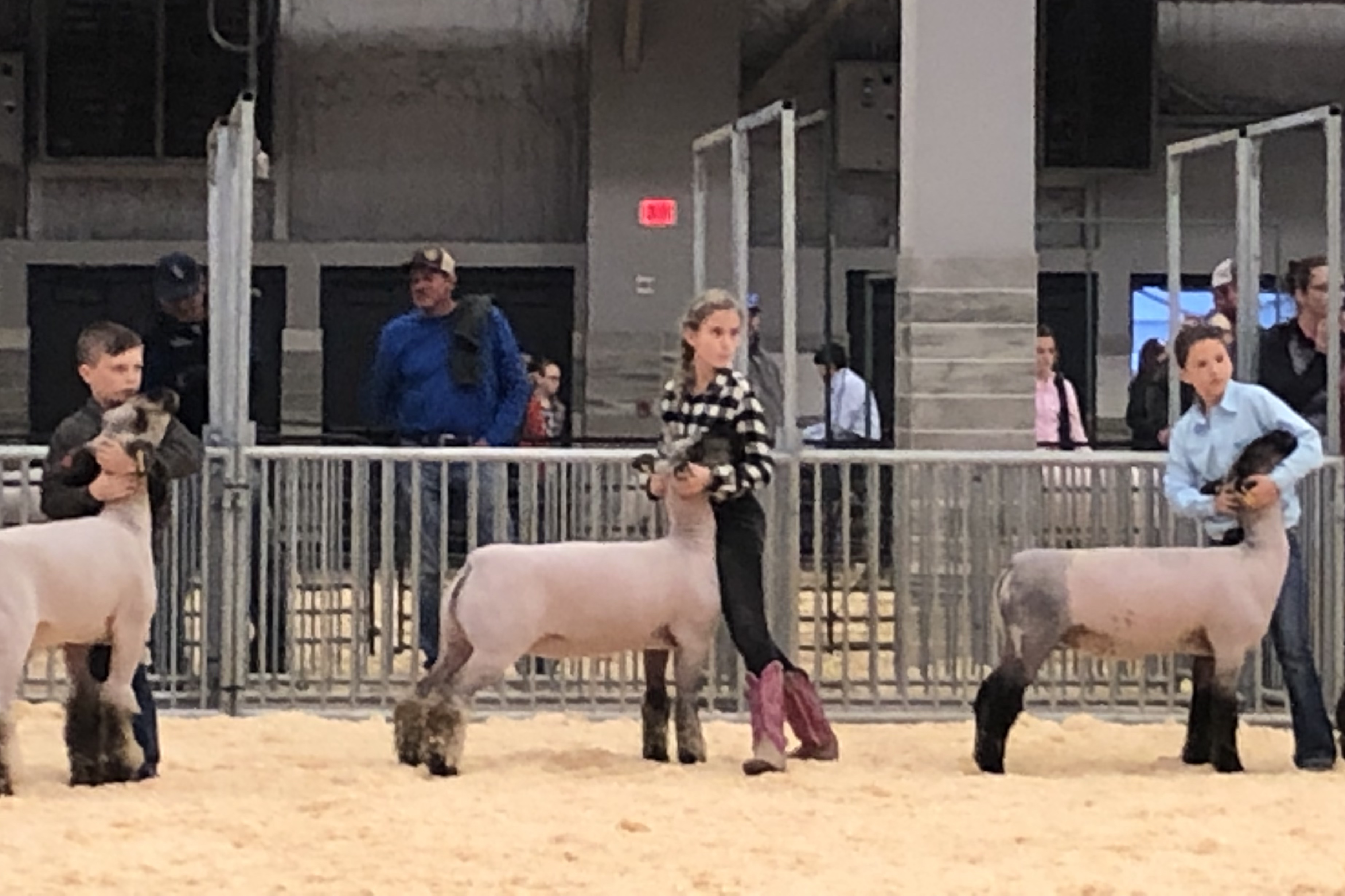 Emerson Tomlinson at LSU State Livestock Show 2019