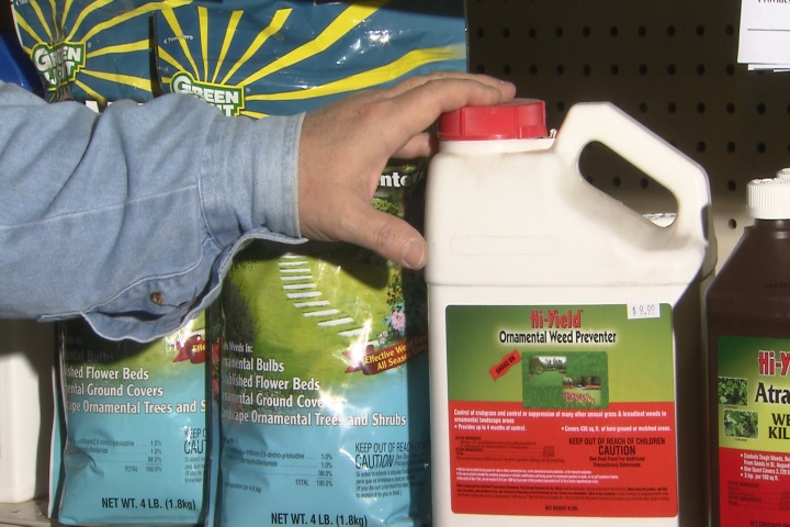 Tackle weeds during winter