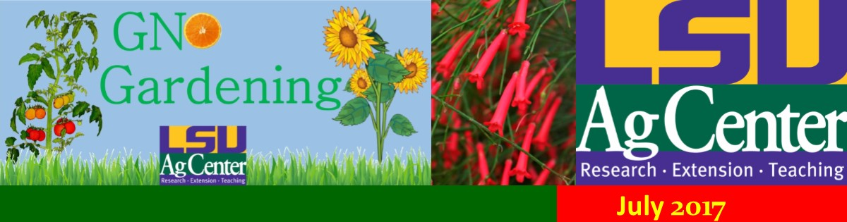 GNO Gardening July 2017 Newsletter