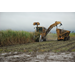 Sugarcane harvest better than expected