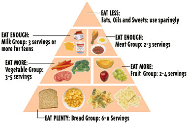 Importance Of The Food Pyramid - YouTube