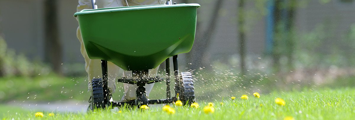Tips for Summer Care of Turfgrass