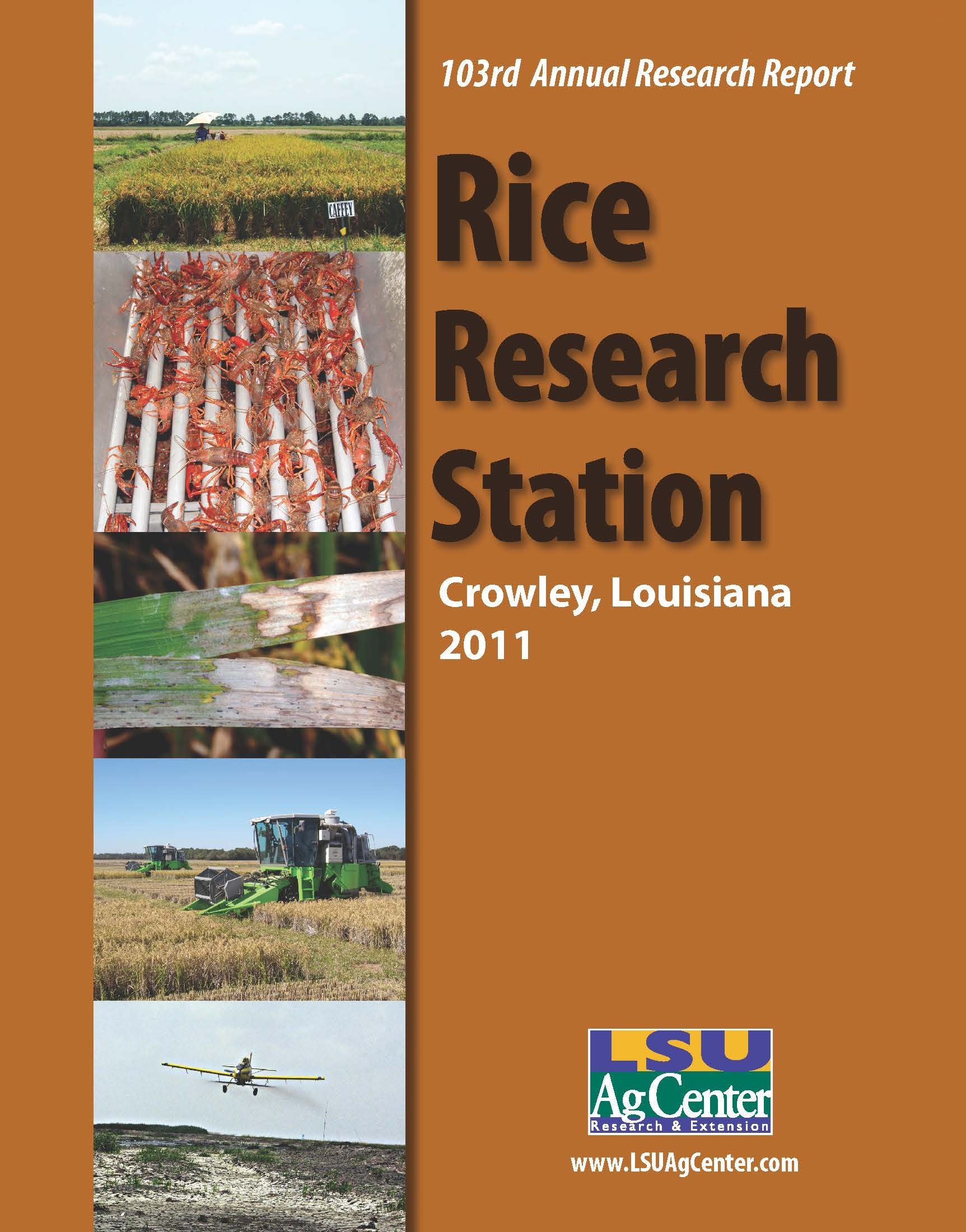 2011 Rice Research Annual Report
